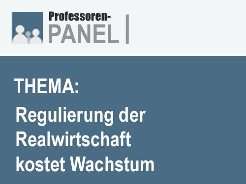 Professoren-Panel der INSM